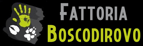 Fattoria Boscodirovo